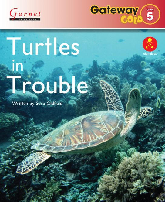 lev-5-Turtles-cover_HR
